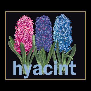 Borduurpakket Hyacint Black Collection - Thea Gouverneur