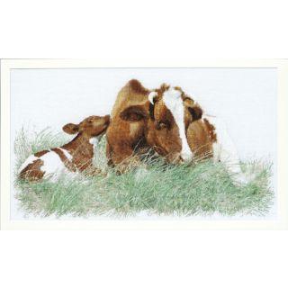 Thea Gouverneur Bruine koe & kalf