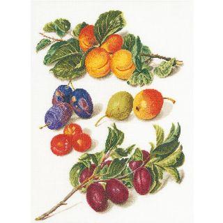 Borduurpakket Fruit portret 2 - Thea Gouverneur