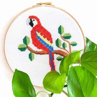 Borduurpakket papegaai - Studio Koekoek