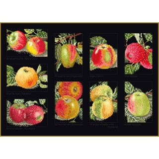 Borduurpakket Appels Black Collection - Thea Gouverneur