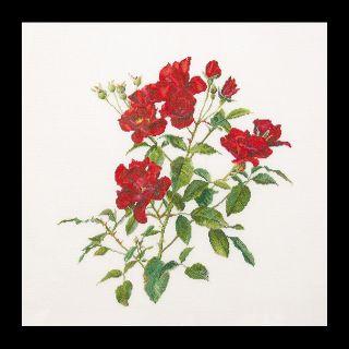 Borduurpakket Fervid (Rode roosjes) Aida - Thea Gouverneur