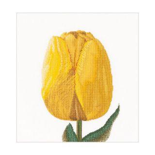 Borduurpakket Gele Tulp Aida - Thea Gouverneur